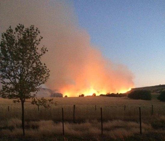 Bomberos trabajaron en voraz incendio en el Cerro Largo
