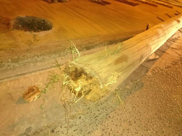 Menor gravemente herido por la caída de un poste