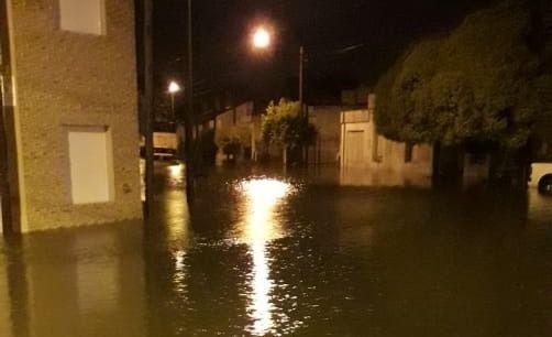 Fotos y videos de lo que la lluvia dejó: casas inundadas y numerosos reclamos vecinales