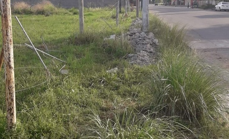 """Quejas por terrenos con """"basura y pastizales altos"""""""