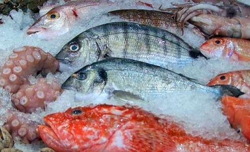 """""""El 19 comé pescado"""": una campaña para incentivar el consumo"""