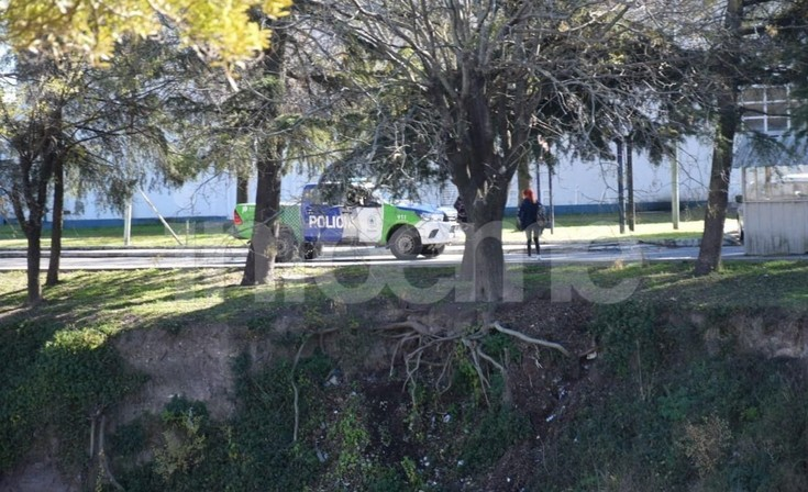 Indignante: Tiraron una perrita al arroyo y fue rescatada