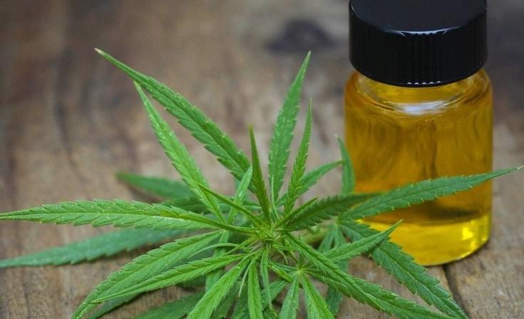 Presentan amparo para que el Estado suministre aceite de cannabis