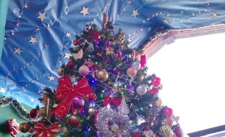 Suspenden la inauguración del árbol navideño en el Hogar de Ancianos
